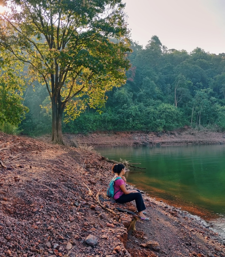 dandlei forest karnataka