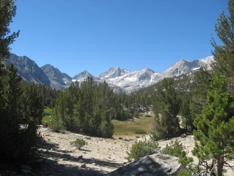 abbott mount (2)