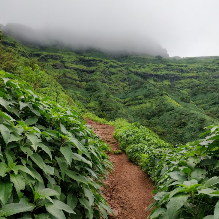 Trekking Around Pune- Rajgad Fort Trek