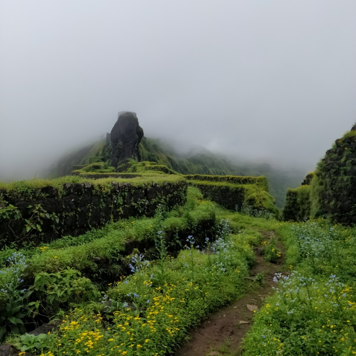 Hatti Prastar on Suvela Machi- Rajgad Fort Trek